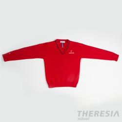 Suéter chico punto rojo (desde 2 años hasta 3º primaria)